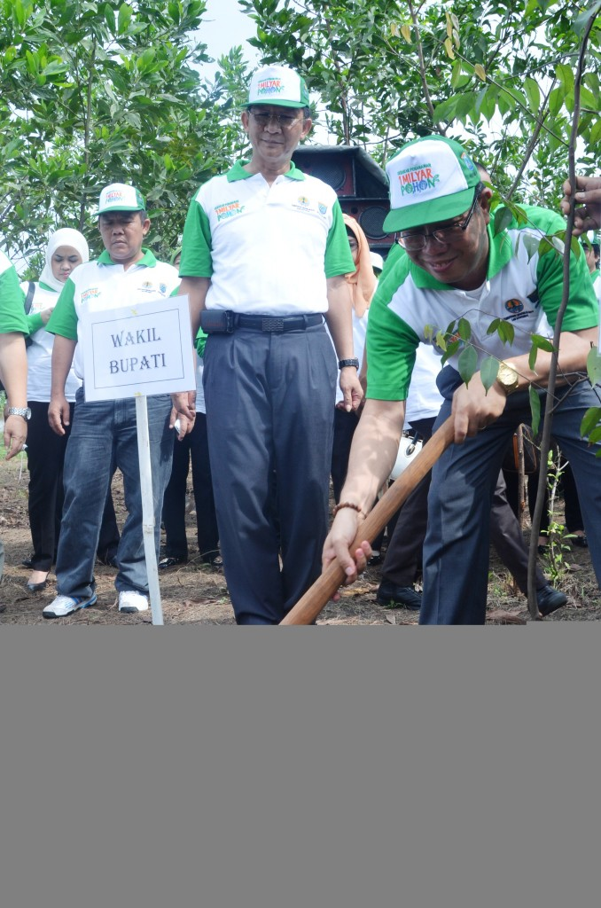 Wabup OKI Tanam Pohon Merawan----Kabupaten OKI sudah sumbang 596.150 batang pohon gerakan nasional satu orang satu pohon