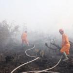 BPBD OKI, Manggala Agni dan Petugas PT Rambang Padamkan Kebakaran Lahan