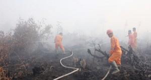Pemadaman--Tim gabungan posko siaga kebakaran hutan Kabupaten OKI memadamkan kebakaran lahan di Lebak Sepucuk Kayuagung