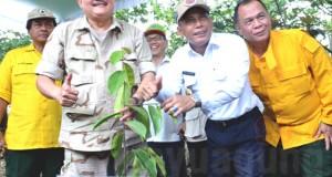 Gubernur Sumsel, Alex Noerdin bersama Bupati OKI, H. Iskandar saat mengunjungi Kebun Plasma Nutfah Sepucuk.